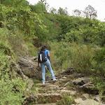 trek to tara devi tempe from Sunrise villa