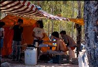 camp. verano 84 (22)