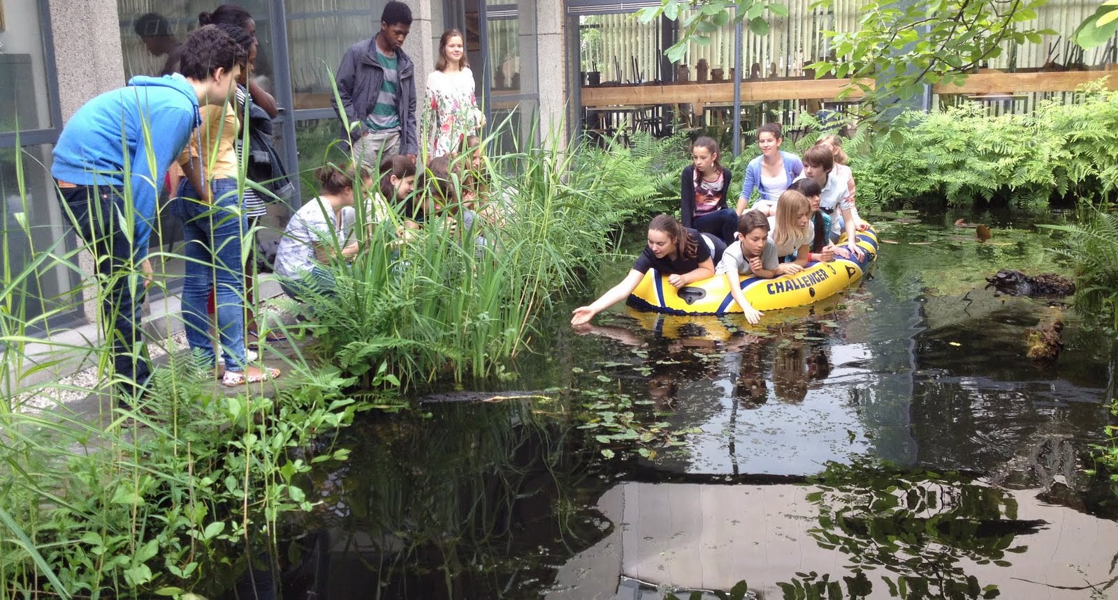Lessen diversiteit en fotosynthese smaken in ons college (8/06/16)