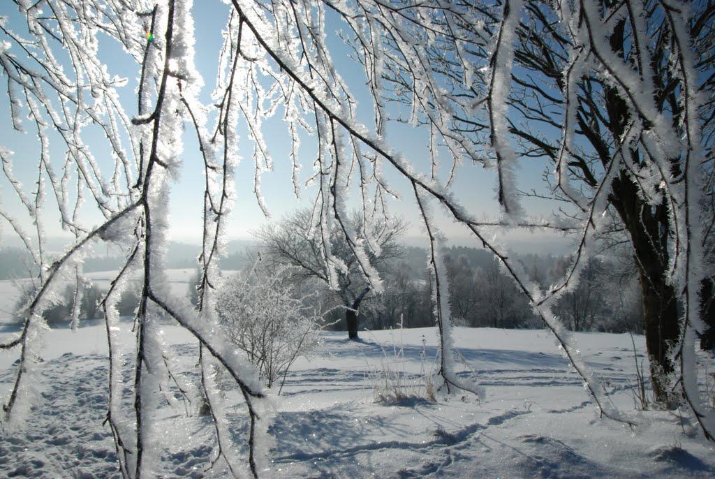 Ladovská zima 2010 - DSC_1574