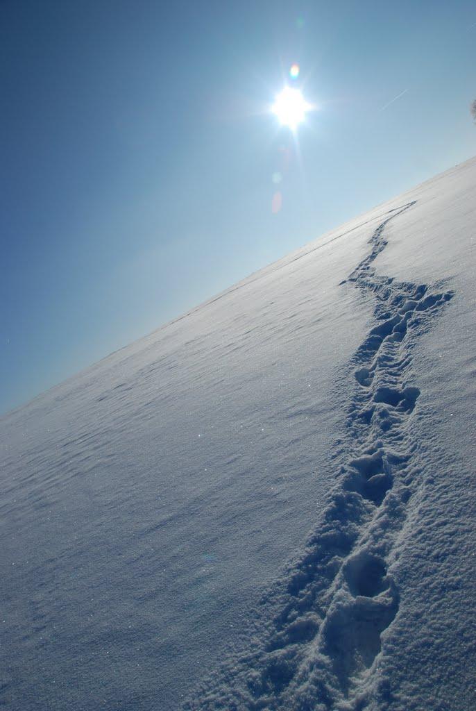 Ladovská zima 2010 - DSC_1642