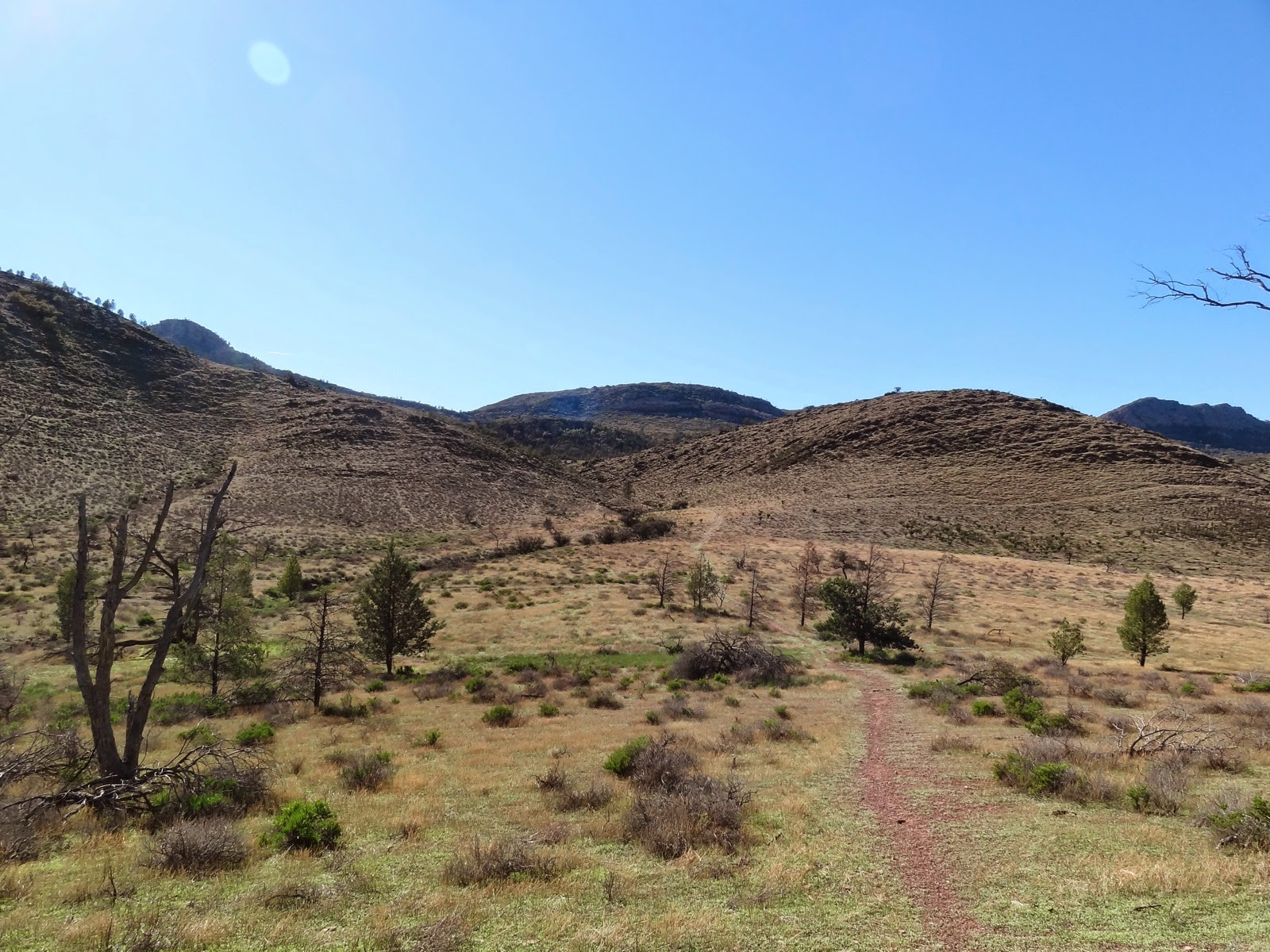 Black gap lookout walk. Only a 2km from the inside wall of Wilpena Pound where I was yesterday