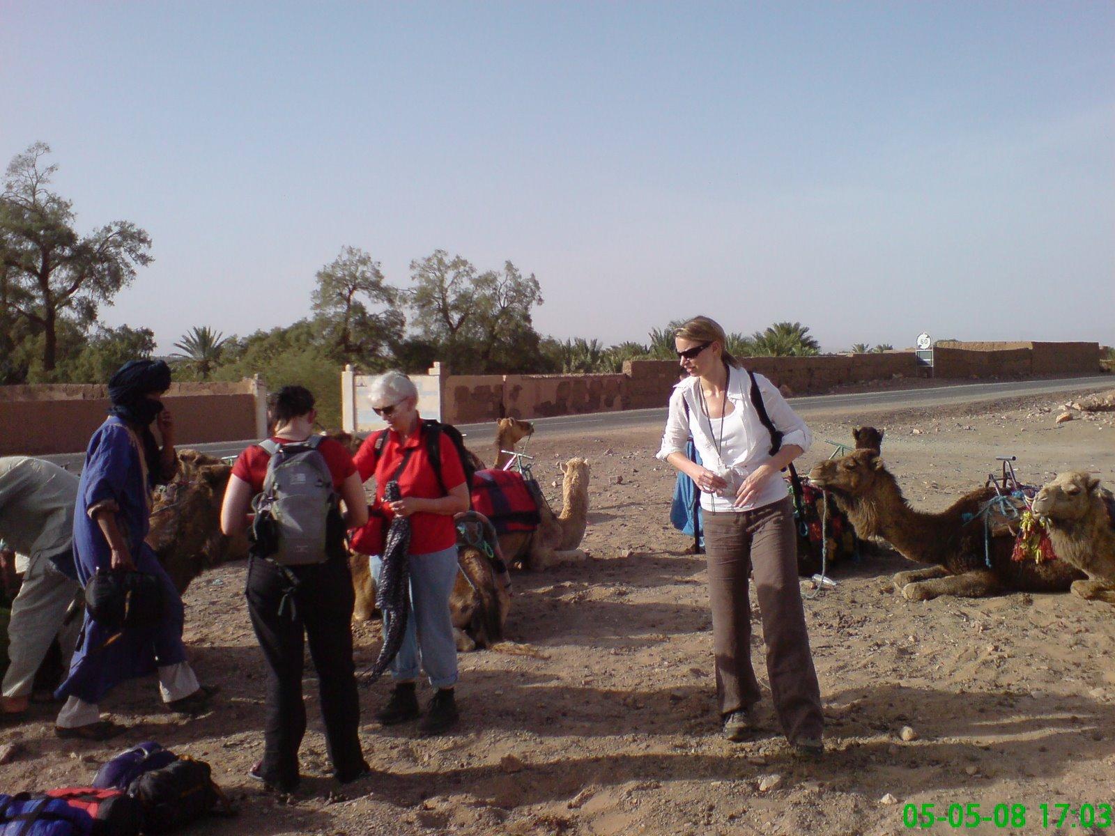 Start of 'camel' trek to the edge of the sahara at Zagora