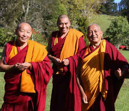 Lama Zopa Rinpoche with Geshe Thubten Wangchen (Dorje Chang Institute resident teacher) and Geshe Jampa Tharchin (Chandrakirti Centre resident teacher) at Mahamudra Centre, New Zealand, May 2015. Photo by Ven. Thubten Kunsang.