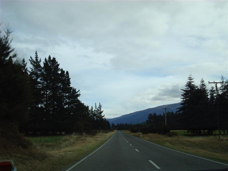 The road from Blenheim to St Arnaud (Nelson Lakes district). It was 100km of pretty straight road