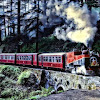 Shimla toy train pulled by Steam engine