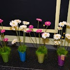 Magnifique décoration floral
