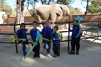 Zoo (1)R