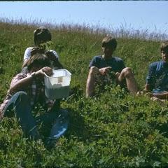 1981 Sommerlager JW - SolaJW81_196