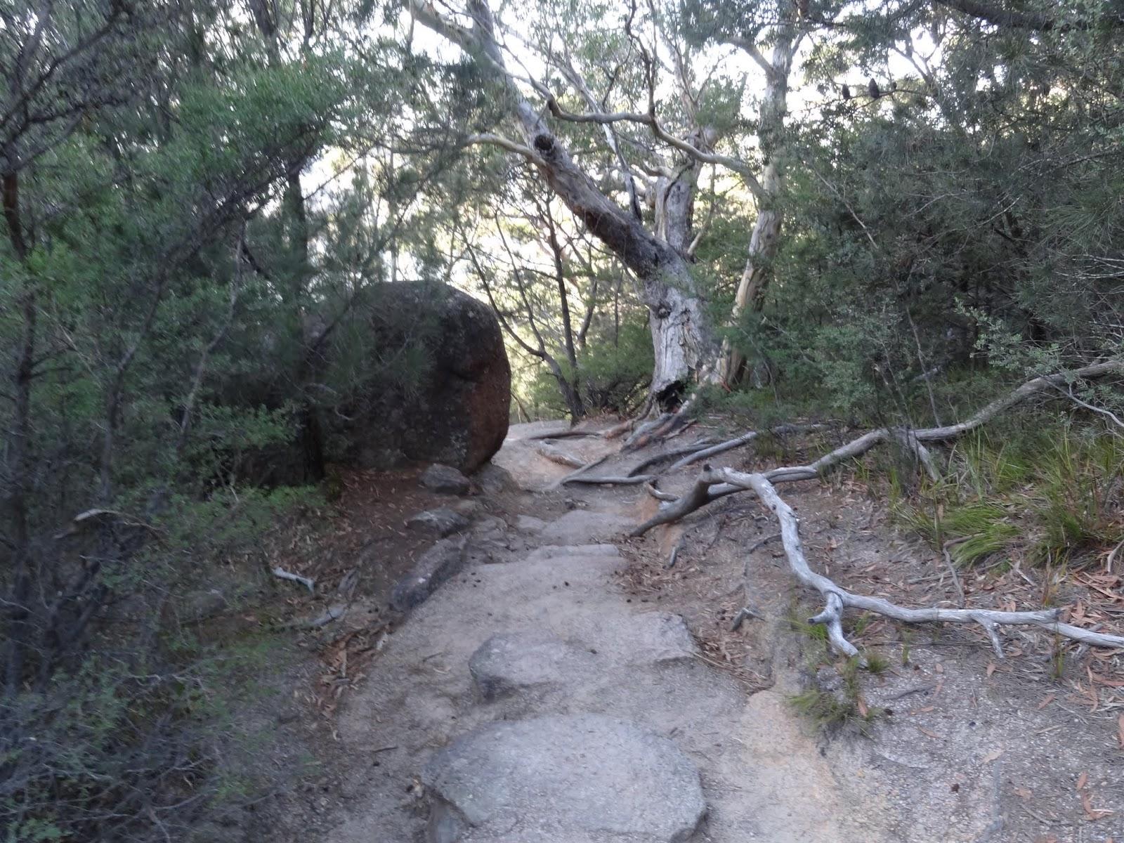 A rough walk down the hill