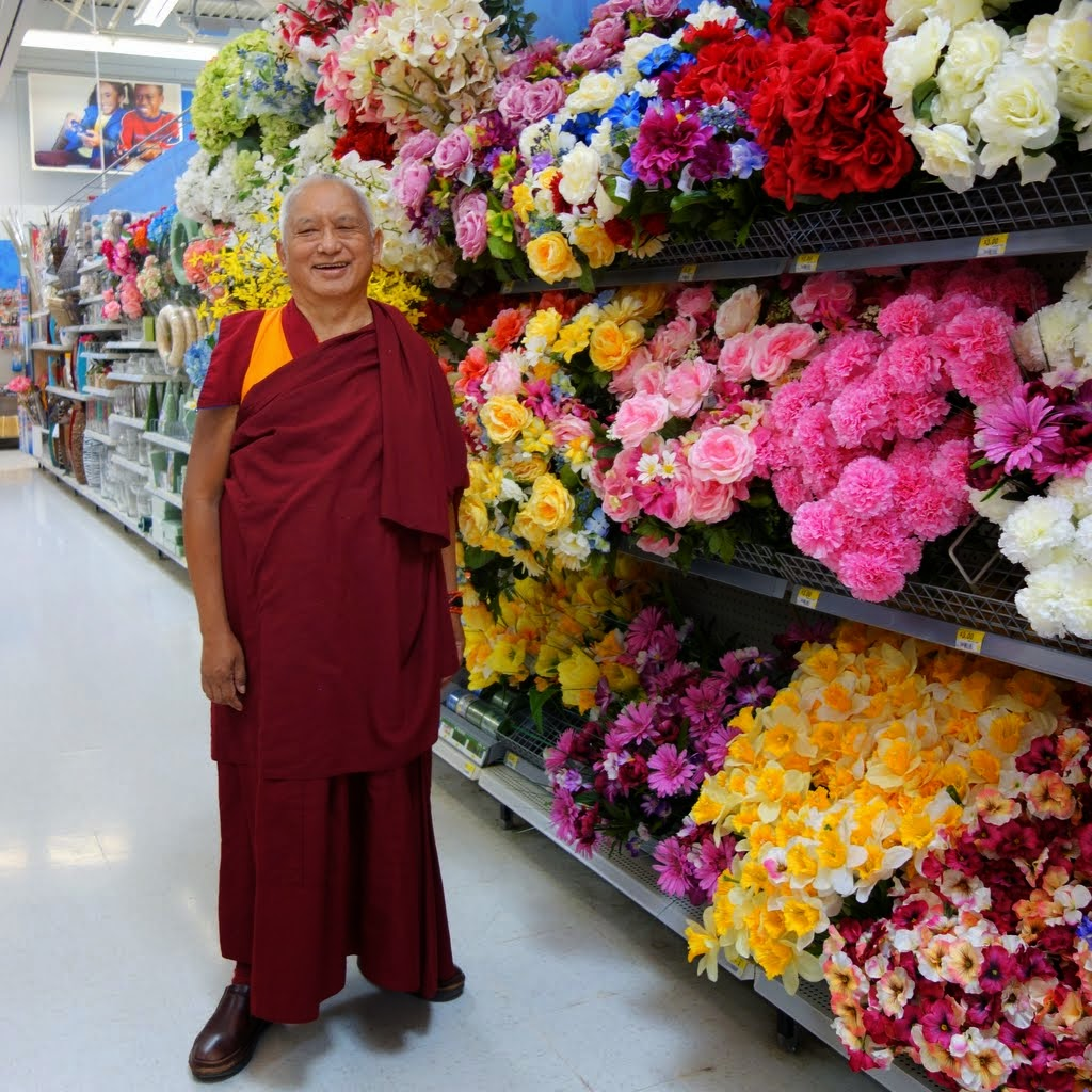 Lama Zopa Rinpoche shopping for flowers for offerings at Buddha Amitabha Pure Land, Washington, US, April 2014. Photo by Ven. Roger Kunsang.
