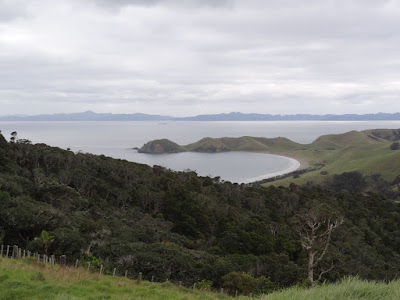 The view of Port Jackson with Great Barrier island in the background