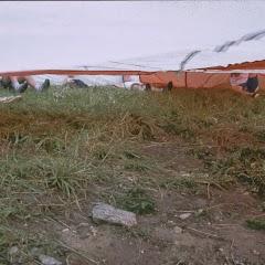 1993 Sommerlager - Sola93_269