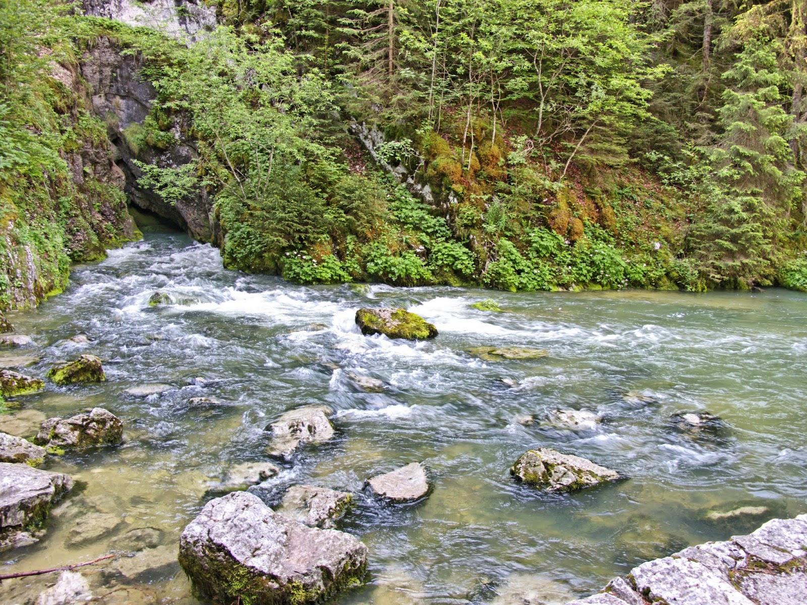 Source du Doubs