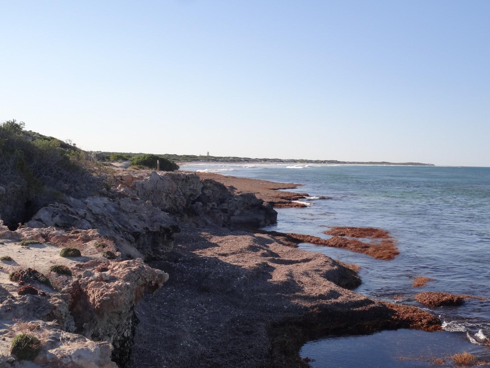 Pre breakfast walk on the coast at Port Denison