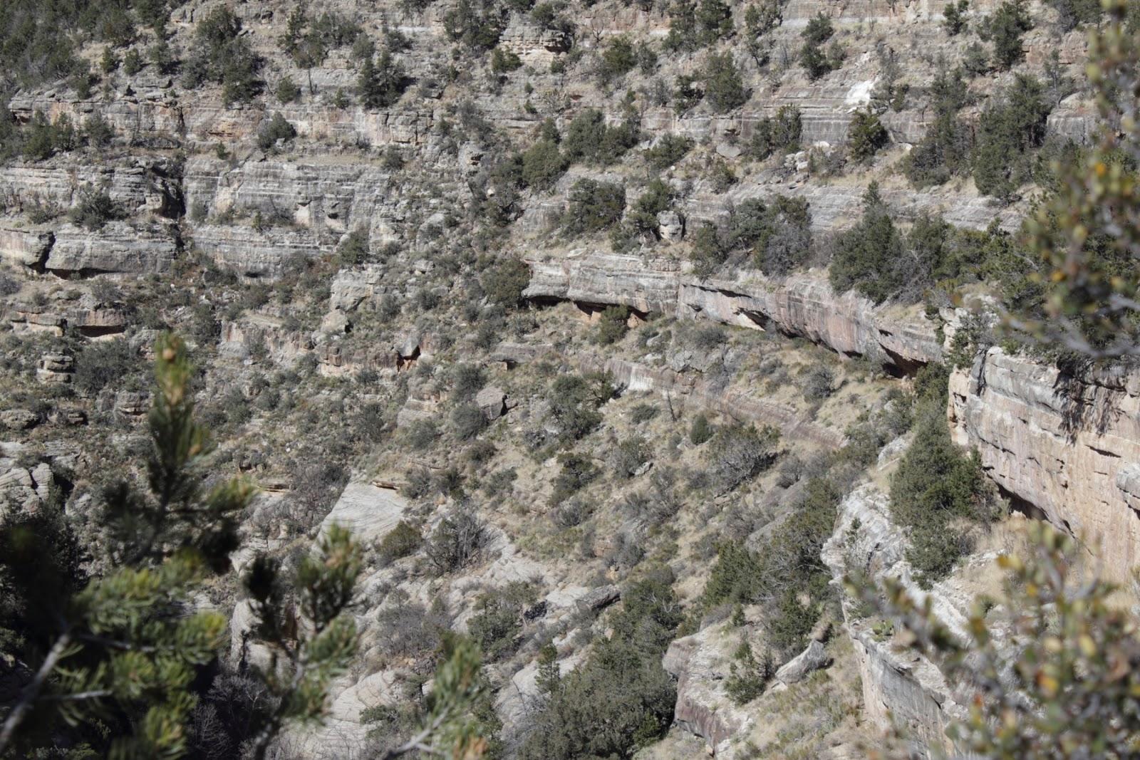 Sinagua cliff dwellings in Walnut Canyon