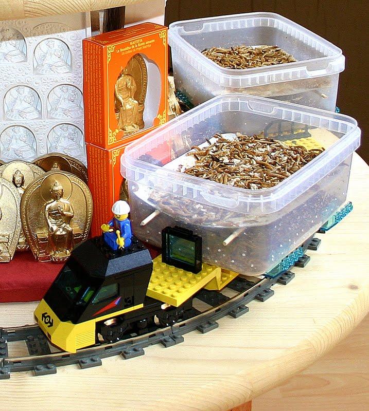 Animal liberation train