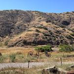Santa Cruz Island: Scorpion landing