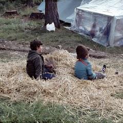 1981 Sommerlager JW - SolaJW81_013