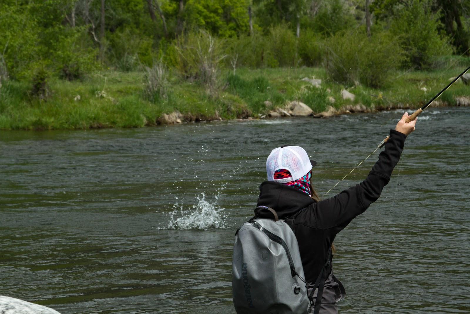 Provo River - Fish On