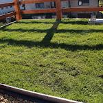 A zöldtetős beruházás mintája a telephelyen