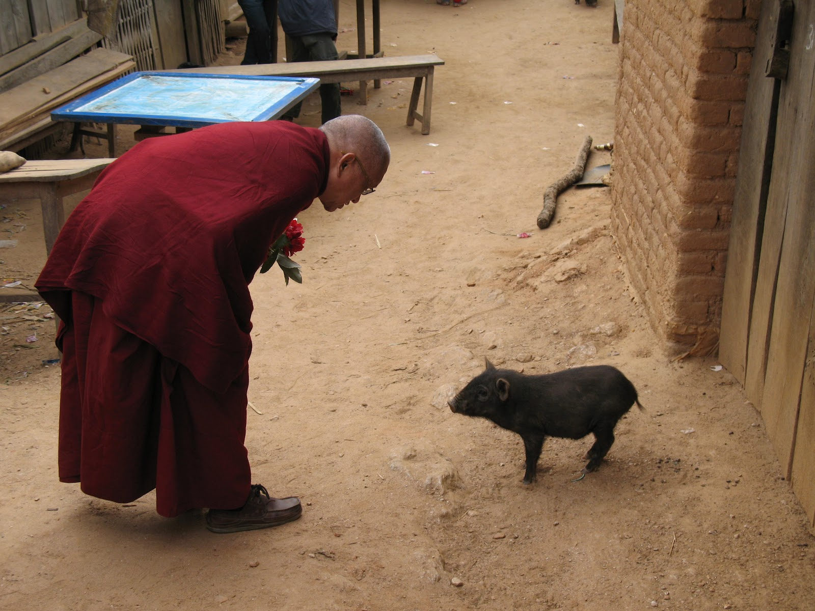 reciting mantras when meeting any animal