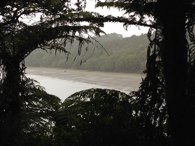 Rainy view of Tawhitokino