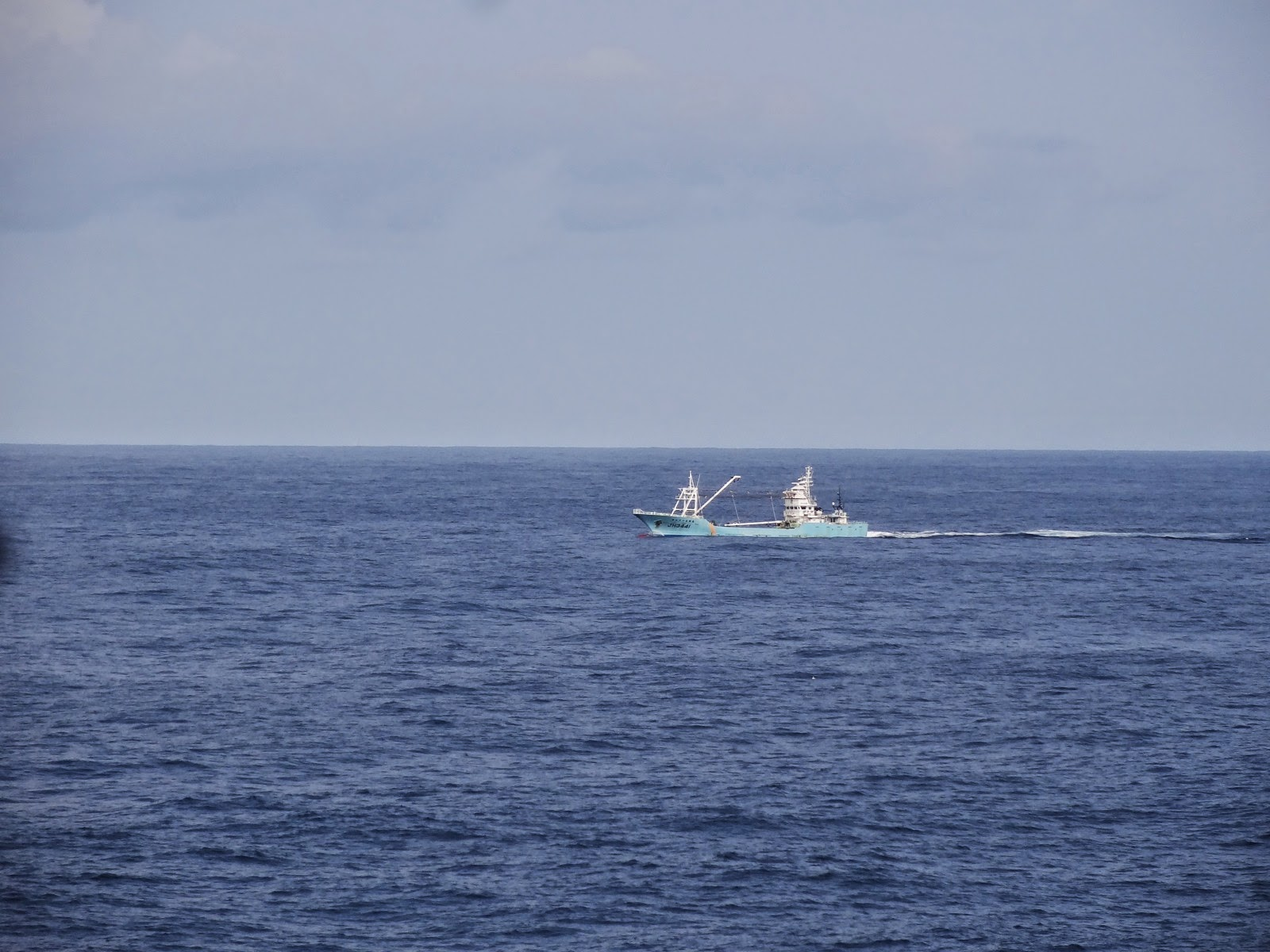 We weren't alone out at sea!