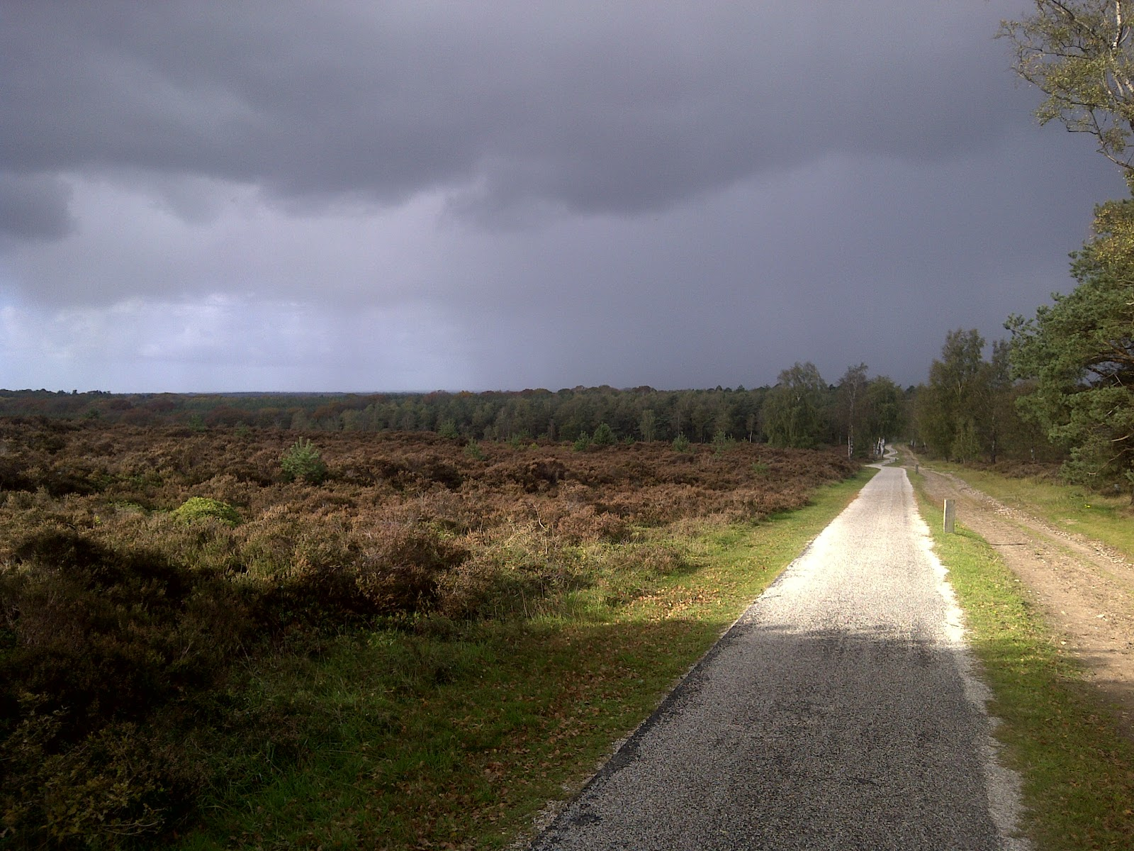 Hail, rain and shine, today the Holterberg was mine. 16km run.