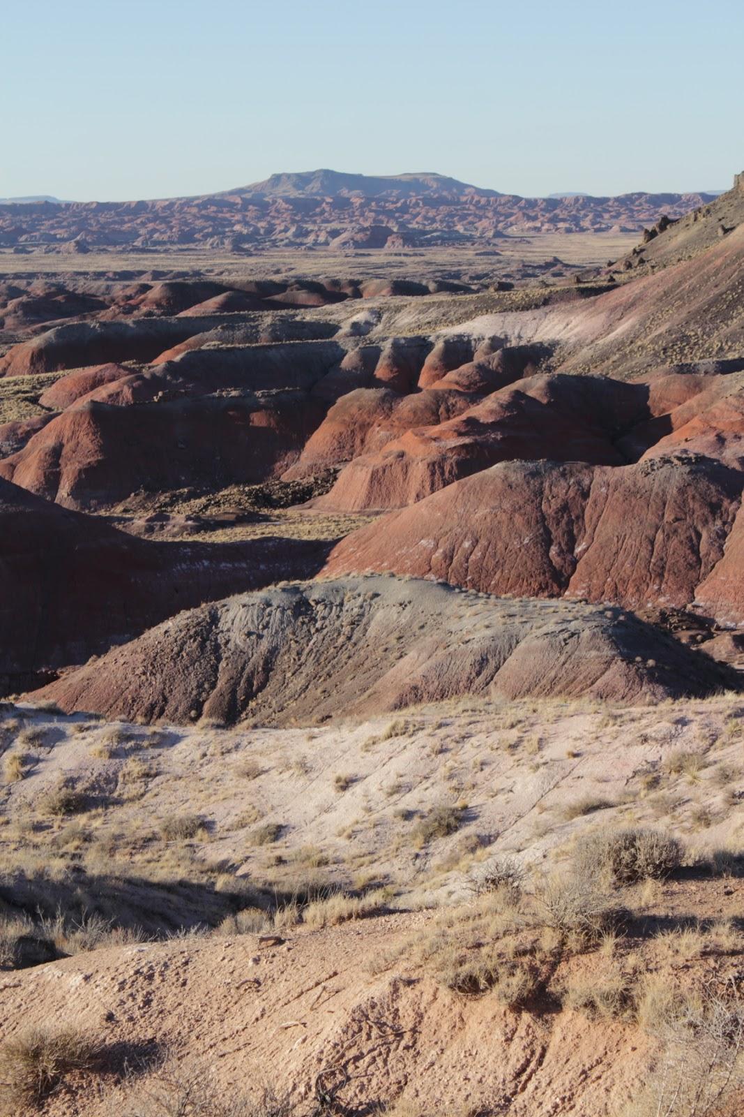 Painted Desert (Pintado Point)