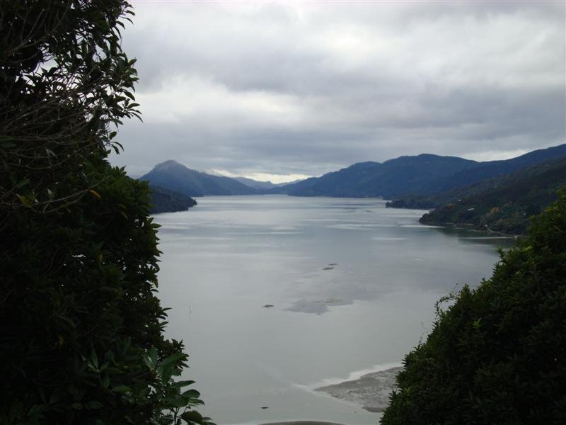 My first view of the Marlborough Sounds in 10 years!