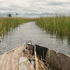 Flowing through the Okavango Delta