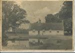 Woodhurst pond