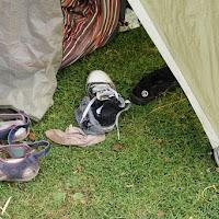 Kampeerweekend 2015 Vrijdag en Zaterdag - 0226_DSC_4090