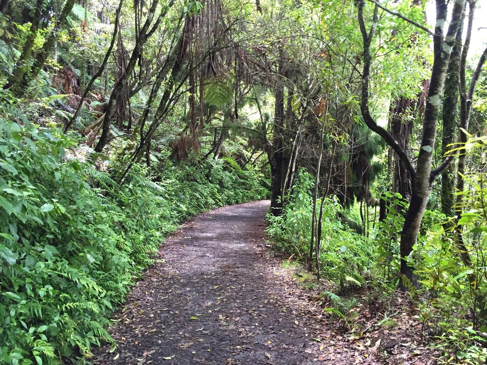 walk to Okere falls