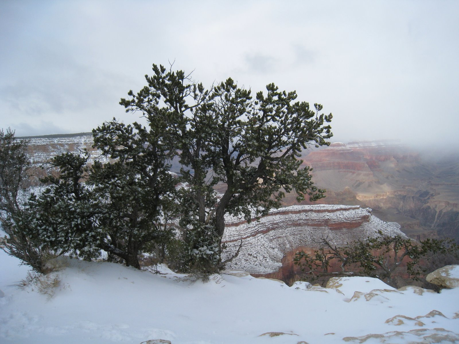 View from the Yavapai Point