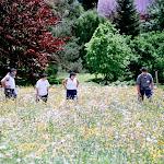 1998-08 Enzklösterle