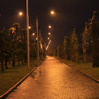 The promenades are many kilometers long with palms brought from Africa
