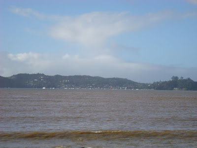 The view from Paihia across to Russell