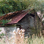 Frog Alley outbuildings, 1994