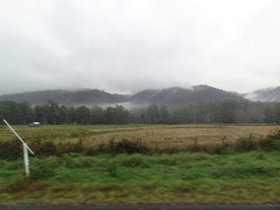 A very foggy drive to Cradle Mountain