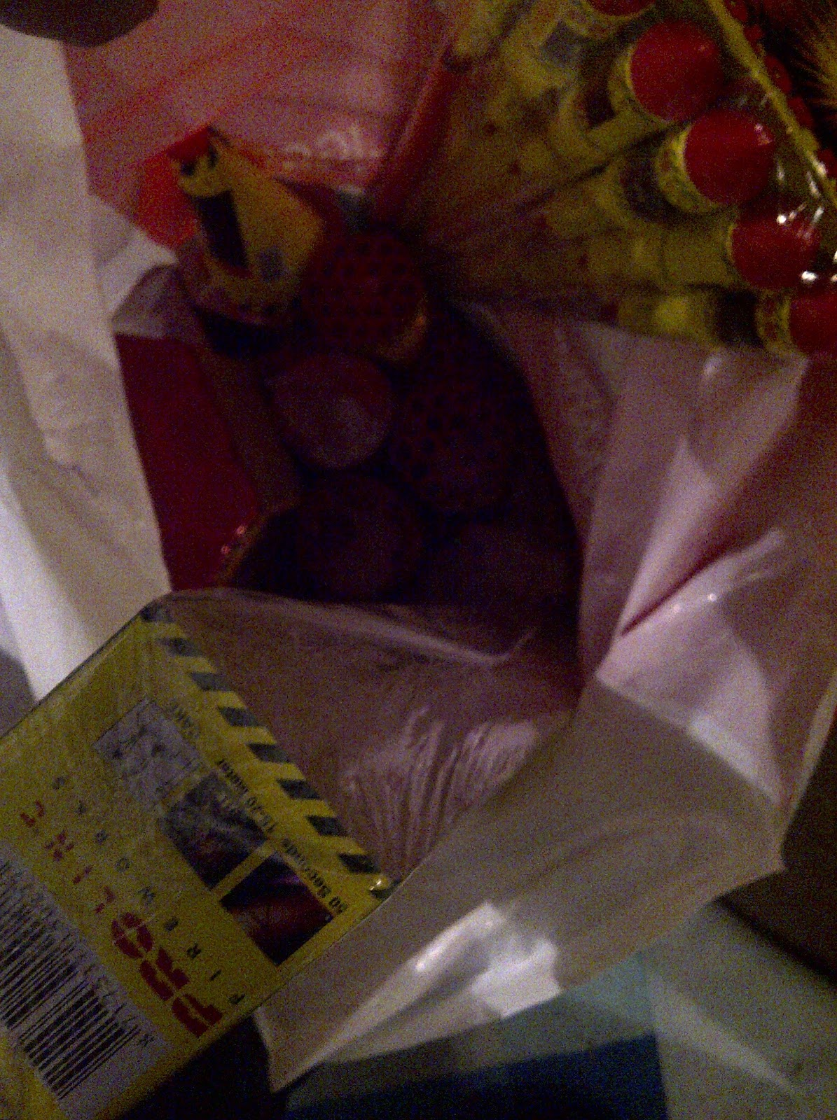 Way too much fireworks, hand selected by my two pyro-sons (7&9). Don't come near our house around midnight :-) #fb