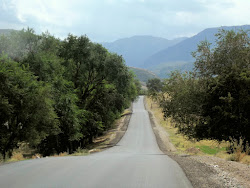Turgenski kanjon