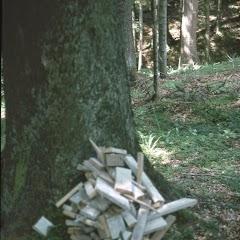 1985 Sommerlager - Sola85_289