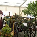 Gyümölcs és zöldségkiállítás képei