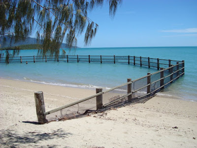 The stinger fence so you can safely swim at Dingo bay