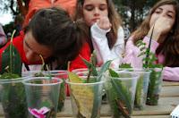 diary-bilingual-camp-22-03-2012-3-2-gallery-1