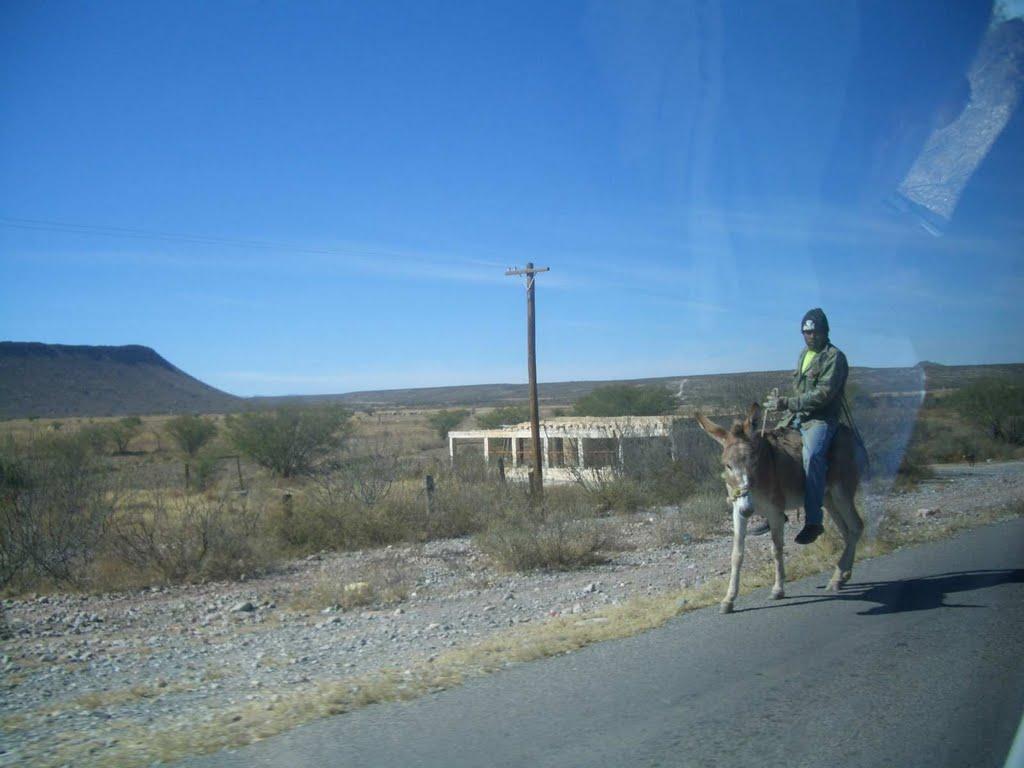 Mitten im Nirgendwo reitet er seinen Esel.. ja dann viel Spaß