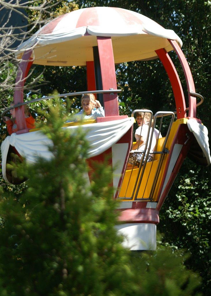 Drievliet 2006 - PICT1263