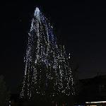 A városi karácsonyfa